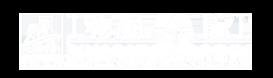 ISMART Logo
